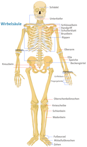 Deutsch für Ärzte | Kurse und Prüfungstraining für Mediziner ...